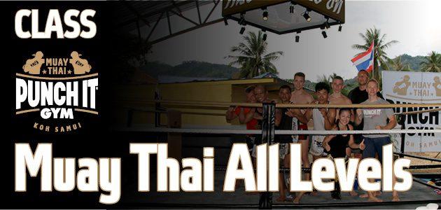 Muay Thai All Levels